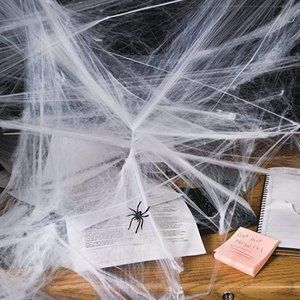 12 pack of stretchy spiderwebs